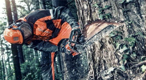 Chainsaw Safety Requirements